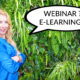 Webinar vs. E-Learning